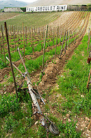 In the Chapoutier vineyards Les Greffeux an old horse drawn plough to work the vineyards lying between the vines. Hermitage. The Hermitage vineyards on the hill behind the city Tain-l'Hermitage, on the steep sloping hill, stone terraced. Sometimes spelled Ermitage. In the background a sign painted black on white with Paul Jaboulet Aine Tain l'Hermitage, Drome, Drôme, France, Europe