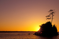 Sea stack in Tillamook Bay silohuetted against sunset, Garibaldi, Oregon