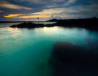 At sunset, a lone palm tree stands over the turquoise water and harsh lava rock shoreline of Kiholo Bay, Big Island.