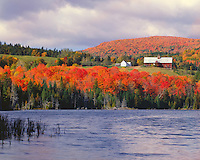 Farm scene in fall color above Keiser Pond; Harvey; VT
