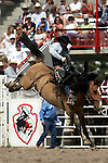 Cheyenne, Wyoming-7/26/2009-Photo by Rick Davis - PRCA rookie cowboy Wayne Kogianes of Provo, Utah, turned in a nice short go round score of 73 points on the Harry Vold bronc Boxer in the Rookie Saddle Bronc event during final round action at the 113th annual Cheyenne Frontier Days Rodeo. Wayne covered three broncs and posted a total score of 211 points to earn him the 2009 Cheyenne Rookie Saddle Bronc Championship.