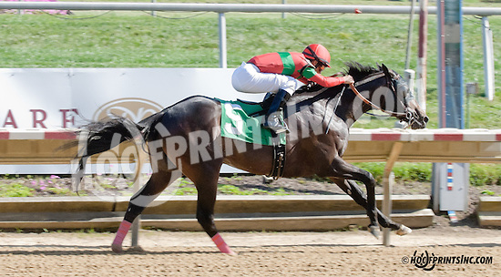 Protonico winning at Delaware Park on 9/7/13