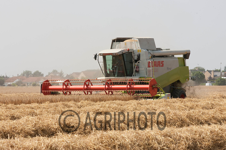 Harvesting Winter Barley in Lincolnshire
