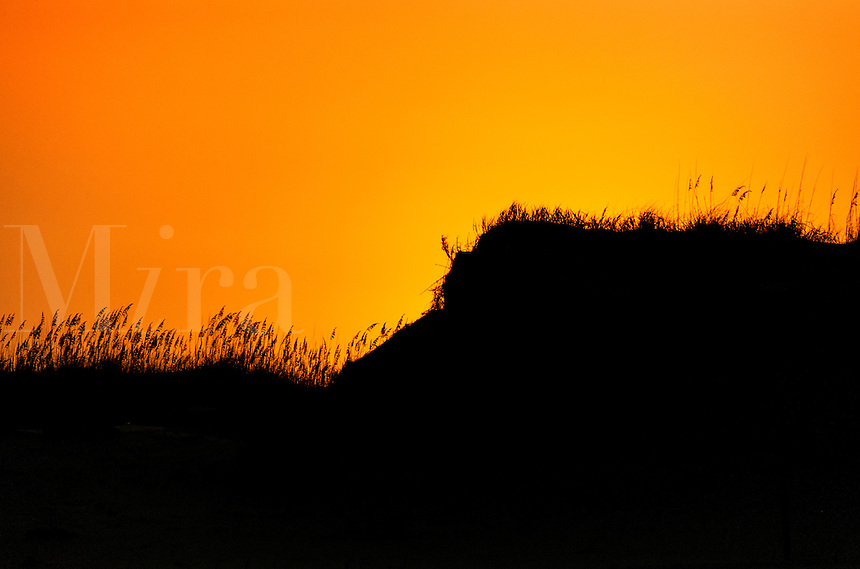 Dune sunrise, Outer Banks, North Carolina, USA