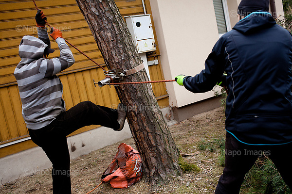 OTWOCK, POLAND, 15/03/2017:<br /> Tomasz and Andrzej are preparing to cut the tree in a small town of Otwock near Warsaw, March 15, 2017. The new controversial law has allowed to cut the trees that were previously banned and there's been a sure in cutting trees all over the country. <br /> (Photo by Piotr Malecki / Napo Images)<br /> ****<br /> OTWOCK,  15/03/2017:<br /> Wycinka dwoch drzew na prywatnej dzialce w Otwocku po wprowadzeniu przez ministra srodowiska Jana Szyszke prawa o swobodym wycinaniu drzew.Fot: Piotr Malecki / Napo Images