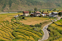 Step farming at Punakha valley. Punakha is a 3 hours journey from Thimpu. Arindam Mukherjee..