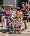 Young ladies dressed in Kimonos talking with a rickshaw driver in Asakusa, Tokyo, Japan