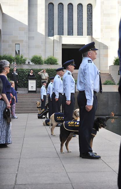 Explosive Detection Dog Sculpture Dedication at the Australian War Memorial, Canberra, October 8th, 2015. Photographer: Mark Graham