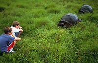 Kids watching giant tortoise in the wild, Galapagos Islands, Ecuador