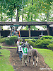 Jewell AA before The Buzz Brauninger Arabian Distaff Handicap (grade 1) at Delaware Park on 9/5/15