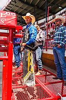 Jake Vold, ponoka,AB,g ready for ride bareback Riding at 2017 Cheyenne Frontyer days
