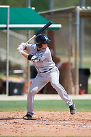 GCL Marlins designated hitter Jared Barnes (20) at bat during the first game of a doubleheader against the GCL Nationals on July 23, 2017 at Roger Dean Stadium Complex in Jupiter, Florida.  GCL Nationals defeated the GCL Marlins 4-0.  (Mike Janes/Four Seam Images)