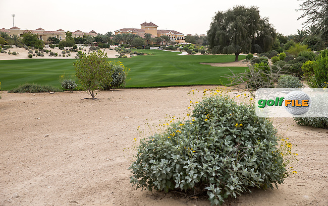 1st fairway at The Els Club , Dubai, United Arab Emirates.  28/01/2016. Picture: Golffile | David Lloyd<br /> <br /> All photos usage must carry mandatory copyright credit (&copy; Golffile | David Lloyd)