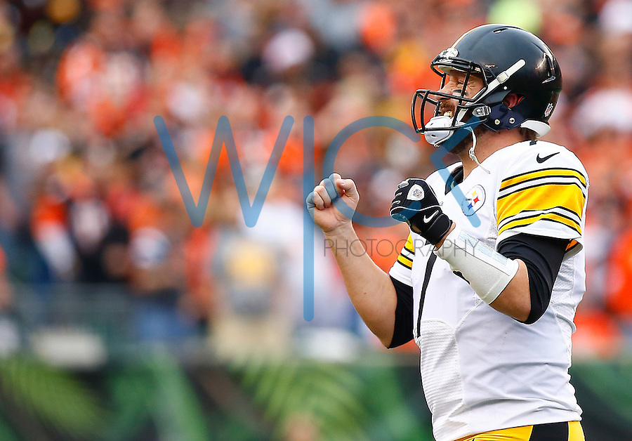 Ben Roethlisberger #7 of the Pittsburgh Steelers reacts following a near interception in the second quarter against the Cincinnati Bengals during the game at Paul Brown Stadium on December 12, 2015 in Cincinnati, Ohio. (Photo by Jared Wickerham/DKPittsburghSports)
