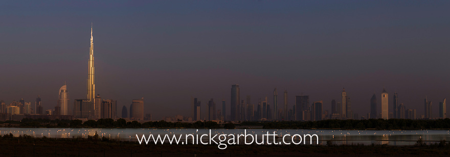 Greater Flamingos (Phoenicopterus roseus) feeding in lake at sunrise at Ras Al Khor Wildlife Sanctuary (Ramsar site), with the Dubai skyline in the background and the first rays of the sun catching the Burj Khalifa (the world's tallest building at 829.8m). Dubai, United Arab Emirates. April 2013