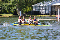 Race: 6  Event: Aspirational Academic 4-<br /> Crew: 117  Club: Aberdeen Univ/ Robert Gordon Univ<br /> <br /> Henley Women's Regatta 2018<br /> Friday<br /> <br /> To purchase this photo, or to see pricing information for Prints and Downloads, click the blue 'Add to Cart' button at the top-right of the page.