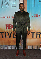 "10 January 2019 - Hollywood, California - Mahershala Ali . ""True Detective"" third season premiere held at Directors Guild of America. Photo Credit: Birdie Thompson/AdMedia"
