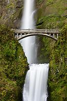 Multnomah Falls and Benson Bridge in the Columbia River Gorge.