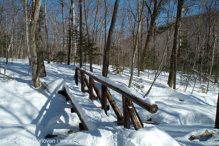 Beaver Brook Trail on the north side of Mount Moosilauke, which is in the White Mountain National Forest of New Hampshire USA..Note: Beaver Brook Trail is part of the Appalachian Trail
