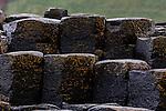 Interlocking Basalt Column are seen at The Giant's Causeway in County Antrim, Northern Ireland on Saturday, June 22nd 2013. (Photo by Brian Garfinkel)