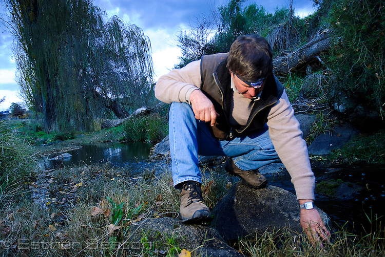 Ian Bell at  Maragle Creek on his property 'Willowvale' where Booroolong Frog occurs, Tumbarumba, New South Wales