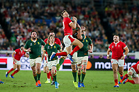 27th October 2019, Oita, Japan;  Dan Biggar of Wales and Duane Vermeulen of South Africa jump for the ball during the 2019 Rugby World Cup semi-final match between Wales and South Africa at International Stadium Yokohama in Kanagawa, Japan on October 27, 2019.  - Editorial Use