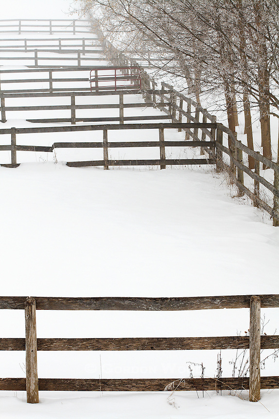 Horse Corral in Winter with Ice Fog and Hoar Frost