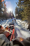 USA, Oregon, Bend, passengers ride in the cargo bed while being pulled around Mt. Bachelor by the sled dogs