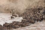 Masai Marra