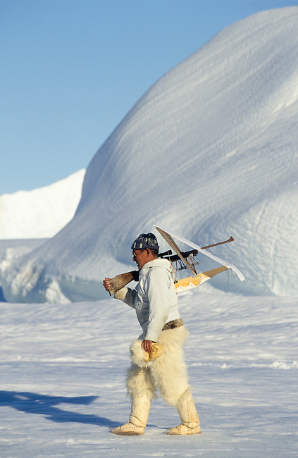 Jeremias Petersen, an Inuit hunter, carrying his rifle fitted with a white screen to hunt seals on the ice in the Spring. Savissivik, Greenland.