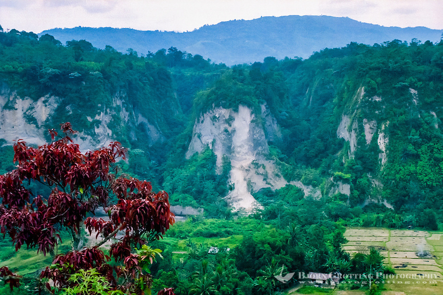 West Sumatra, Bukittinggi. Sianok canyon (Ngarai Sianok) is a steep valley (ravine) located in Bukittinggi, about 15 km long.