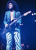 STEVE LUKATHER (1982)