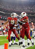 Dec 6, 2009; Glendale, AZ, USA; Arizona Cardinals wide receiver (15) Steve Breaston against the Minnesota Vikings at University of Phoenix Stadium. The Cardinals defeated the Vikings 30-17. Mandatory Credit: Mark J. Rebilas-