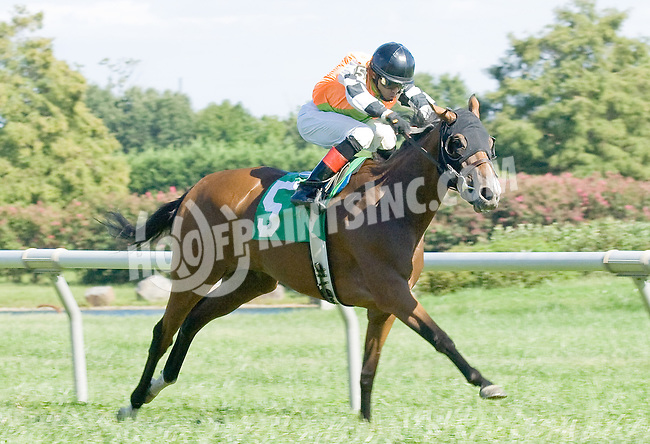 Tippie Tap winning at Delaware Park on 9/10/12