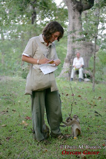 Rachel Hughes Observing Toque Macaques