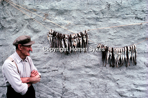 Shetland Islands Scotland Uk 1979. Fisherman hanging out Whiting on his croft back wall, it is drying.