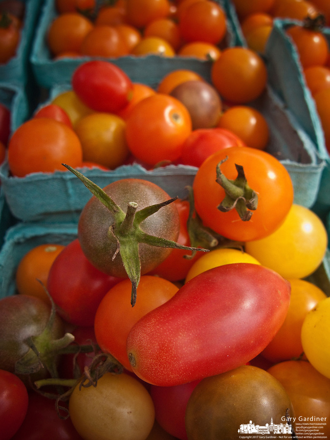 Fresh crop of cherry tomatoes at the Uptown Westerville Farmers Market on Wednesday.
