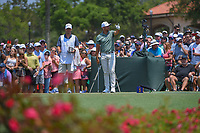 Jason Day (AUS) does a wind check prior to his tee shot on 3 during round 1 of The Players Championship, TPC Sawgrass, at Ponte Vedra, Florida, USA. 5/10/2018.<br /> Picture: Golffile | Ken Murray<br /> <br /> <br /> All photo usage must carry mandatory copyright credit (&copy; Golffile | Ken Murray)
