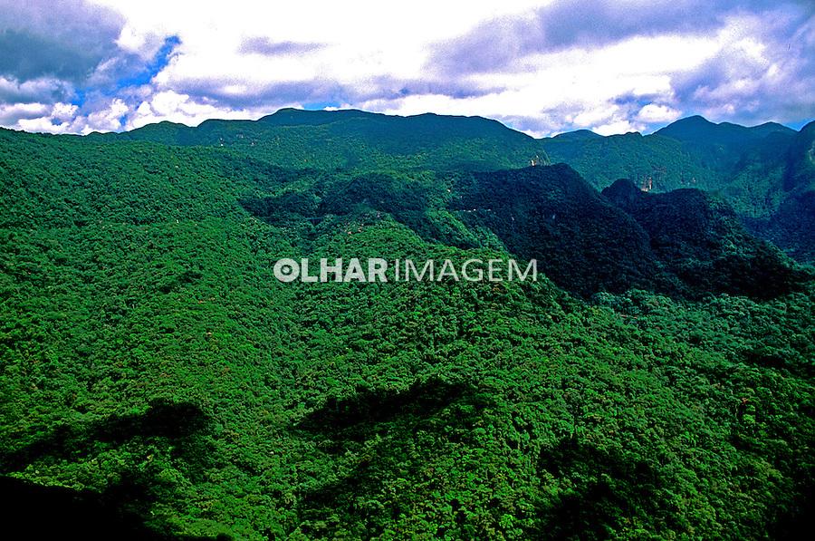 Cadeia de montanhas da Serra do Mar, Paraná.2000. Foto de Renata Mello.