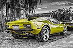 Vintage Pantera sports car