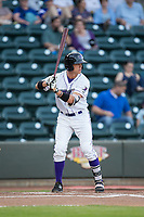 Alex Call (6) of the Winston-Salem Dash at bat against the Buies Creek Astros at BB&T Ballpark on April 13, 2017 in Winston-Salem, North Carolina.  The Dash defeated the Astros 7-1.  (Brian Westerholt/Four Seam Images)