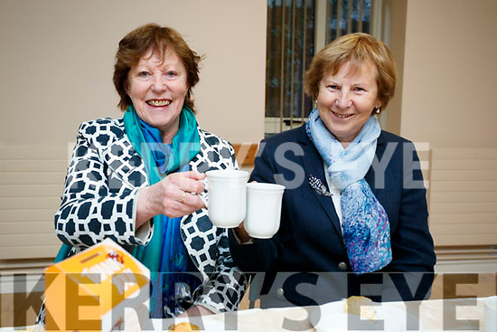 Enjoying the Kerry Hospice Coffee Morning, held at St. John's Pastoral Centre, Tralee, on Friday morning last were l-r: Anna Hickson and Mary Hayes.