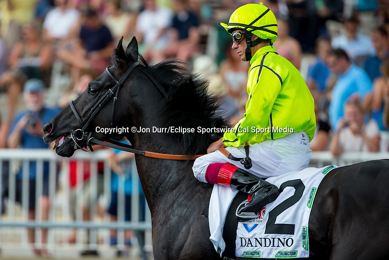 AUG 16, 2014: Dandino, ridden by Lanfranco Dettori, before the third running of the American St. Leger at Arlington International Race Track in Arlington Heights, IL. Jon Durr/ESW/Cal Sport Media