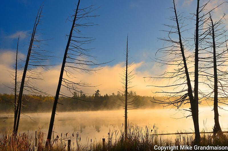 Fog at dawn on Lyons Lake<br /> Whiteshell Provincial Park<br /> Manitoba<br /> Canada