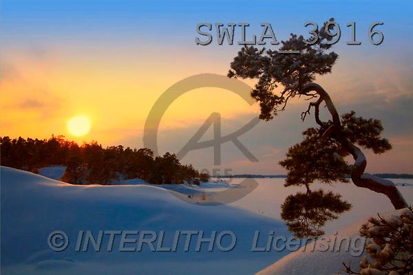 Carl, CHRISTMAS LANDSCAPE, photos(SWLA3916,#XL#) Landschaften, Weihnachten, paisajes, Navidad