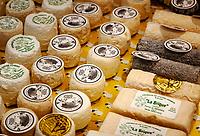 Frankreich, Bourgogne-Franche-Comté, Département Jura, Lons-le-Saunier: Hauptstadt des Départements Jura - Ziegenkaese im Geschaeft 'Chez l'Artisan Fromager' | France, Bourgogne-Franche-Comté, Département Jura, Lons-le-Saunier: capital of Département Jura - cheese shop 'Chez l'Artisan Fromager' offering local goat cheese