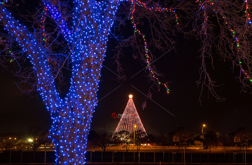 Zilker Holiday Tree as seen through the Zilker Park Trail of Lights