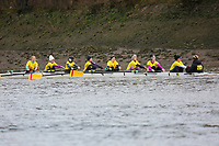 Crew: 233   Wolfson College Oxford (Inverarity)   W Devel<br /> <br /> Quintin Head 2019<br /> <br /> To purchase this photo, or to see pricing information for Prints and Downloads, click the blue 'Add to Cart' button at the top-right of the page.