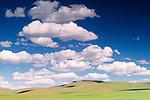 Great Gobi Protected Area, Govi-Altai Province, Mongolia