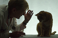Dr. Sharon Grace with cat.